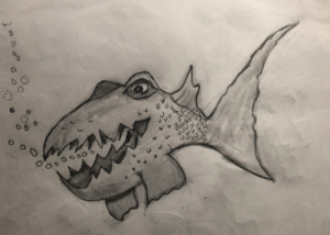 A Toothy Fish that knows what foods to avoid eating while on a ketogenic diet